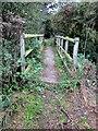 SJ4458 : Footbridge over Golborne Brook by Jeff Buck