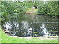 TQ4066 : Pond in The Knoll, Hayes by Marathon