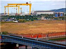 J3574 : Gigantic H & W Cranes (Goliath & Samson) built in 1969 & 1974 by Joseph Mischyshyn