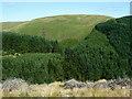 SN8256 : Coniferous forest across Cwm Irfon, Powys by Roger  Kidd
