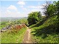 SJ9897 : Path north of Ashtonhill Cross by John Topping