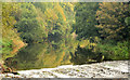 J1049 : The River Bann at Laurencetown (1) by Albert Bridge