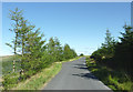 SN8256 : Mountain road to Abergwesyn, Powys by Roger  Kidd
