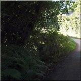 SS6712 : Saul's Bridge near Saul's Farm by David Smith