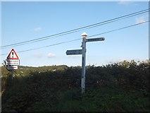 SS6613 : Bridge Reeve Cross signpost by David Smith