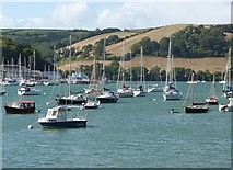 SX8752 : Looking across the River Dart towards Rough Point by Derek Voller