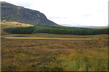 NH2276 : Looking across part of Braemore Forest by jeff collins