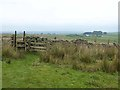 NY8176 : Pennine Way at Longlee Rigg by Oliver Dixon