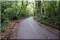 TQ8114 : Stonestile Lane by Peregrine
