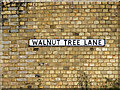 TL8641 : Walnut Tree Lane sign by Adrian Cable