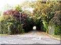 TL9041 : Entrance to Sudbury Garden Centre by Adrian Cable