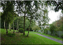 SO9698 : Footpath in Willenhall, Walsall by Roger  Kidd