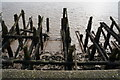 TA0927 : The former jetty along the River Humber by Ian S