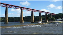 NT1378 : Forth Bridge approach above the Hawes Pier by kim traynor
