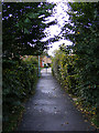 TM3863 : Footpath to Kingfisher Rise by Adrian Cable