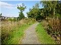 NS3878 : Path around industrial estate by Lairich Rig