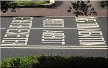 SX9065 : Road markings, Newton Road, Torquay by Derek Harper