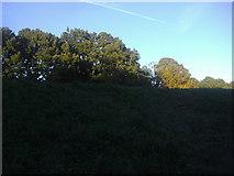 TQ2686 : Hampstead Heath by Vale of Health by David Howard