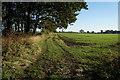 TA0045 : A bridleway towards Scorborough by Ian S