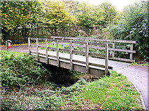 TM3763 : Footbridge on the footpath to Tennyson Road by Adrian Cable