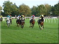 TF9229 : Going a good gallop - Fakenham Racecourse by Richard Humphrey