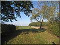 SE7926 : Shortbutts Lane and Woody Plantation by Jonathan Thacker