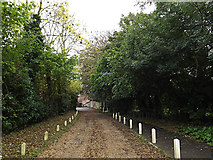 TM3863 : Entrance to the White Hart Public House car park by Adrian Cable