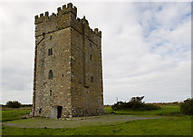 T0005 : Castles of Leinster: Ballyhealy, Wexford (1) by Mike Searle