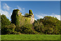 R8703 : Castles of Munster: Castle Cooke, Cork (1) by Mike Searle