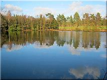 SK2670 : Ring Pond by Trevor Rickard