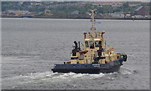 NS2876 : Svitzer Milford heads home after working P&O's Adonia at Greenock by Terry Robinson