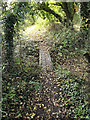 TM3865 : Footbridge on the footpath to Rosemary Lane by Adrian Cable