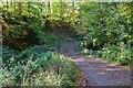 NT3368 : Estate track crossing the Dean Burn by Jim Barton
