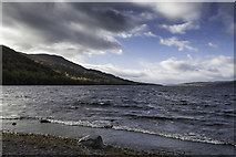 NN6557 : Eastern shores of Loch Rannoch by Peter Moore