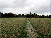 TR2258 : Approaching Ickham by Chris Heaton