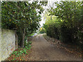TM3863 : Entrance to the White Hart Public House & path to Abbotts Grange by Adrian Cable
