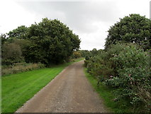 TR1758 : Track leading towards Canterbury Golf Course by Chris Heaton