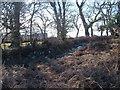 SX7676 : Moorland edge above the Lemon valley by Derek Harper