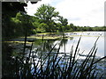 SU9497 : Shardeloes Lake from the east by Peter S