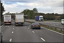 SJ8635 : Stafford District : The M6 Motorway by Lewis Clarke