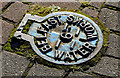 J4174 : Belfast Water Works access cover, Dundonald by Albert Bridge