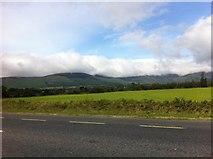S3302 : Field near Lemybrien, northwest view by Darrin Antrobus