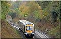 J4180 : Railway cutting and train, Cultra by Albert Bridge