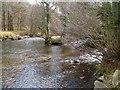 SX7171 : River Dart at Deeper Marsh by Derek Harper