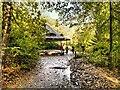 SD8204 : Shelter in The Dell, Heaton Park by David Dixon