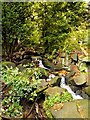 SD8204 : Stream and Waterfall, Heaton Park Dell by David Dixon