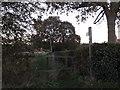 TM3679 : Footpath off Lodge Lane by Geographer