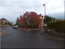 SX9292 : Colour in College Road, Exeter by David Smith