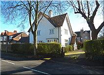 SJ7886 : Detached house on Grange Avenue by Anthony O'Neil
