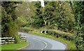 J4159 : The Station Road, Saintfield (1) by Albert Bridge